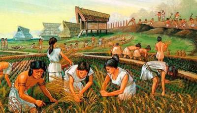 agricultura neolitico