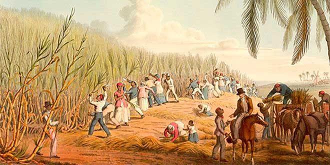 Estructura Socioeconómica De América Colonial Historia