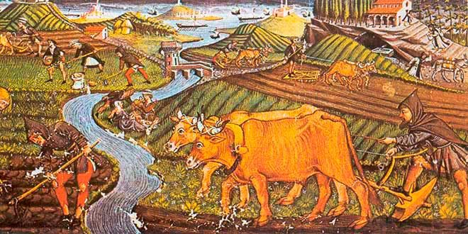 La Agricultura en la Edad Media | Historia Universal