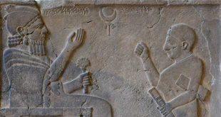 ostato rey barrekub