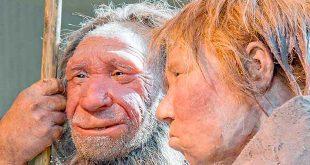 rostro neandertal