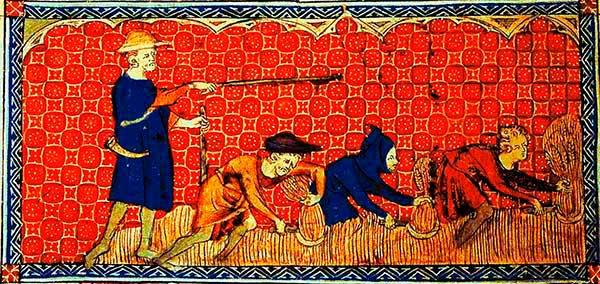 siervos siglo XIV gleba